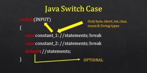 java switch case syntax infographic