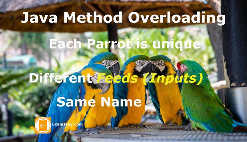 Java Method Overloading Infographic